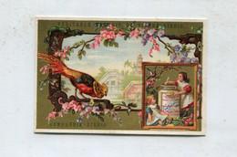 Chromo LIEBIG : S 101 / B - Oiseaux / Ucelli - N° 5 - 1878/1883 - Liebig