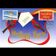 CM CEF - Meilleurs Voeux 2004 - 6/11/2003 Paris - 2000-09