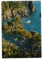 PROVENCE ALPES CÔTE D'AZUR  - UN COIN TYPIQUE  - CIRCULEE ST RAPHAËL VERS TOURS - Provence-Alpes-Côte D'Azur