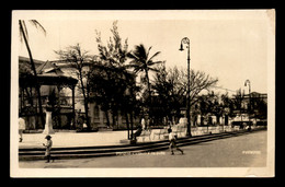 MEXIQUE - VERACRUZ - PARQUE VAZQUEZ - Mexique