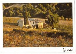 PROVENCE ALPES CÔTE D'AZUR : IMAGE & LUMIERES PROVENCE SOLEIL MUSCAT - Provence-Alpes-Côte D'Azur