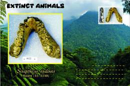 Vignettes De Fantaisie, Extinct Animals : Hominoidea (2), Sivapithecus Sivalensis - Fantasy Labels