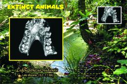 Vignettes De Fantaisie, Extinct Animals : Hominoidea (2), Lufengpithecus Hudiensis - Fantasie Vignetten