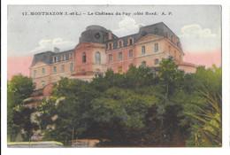 Montbazon, Chateau Du Puy (côté Nord) (10874) - Montbazon