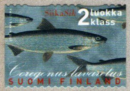 Finland - 2000 - European Whitefish (Coregonus Lavaretus) - Mint Self-adhesive Coil Stamp - Nuevos