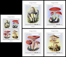 MOZAMBIQUE 2021 - Mushrooms, M/S + 4 S/S. Official Issue [ MOZ210102] - Champignons