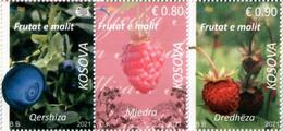 Kosovo Stamps 2021. Forest Fruits: Blueberry, Strawberry, Raspberry. Set MNH - Kosovo