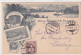Thun - Hotel Bellevue - Vorläuferlitho - 1891 - Top     (10610) - BE Berne