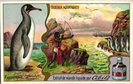VG6 Chromos Set Complete Circa 1900  6 Cards Litho Waterfowl Pinguin Wild Goose Cormorant Wild Duck Silver Seagull Gans - Liebig