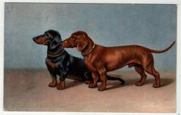 Chiens // Chien , Carte Fantaisie - Dogs