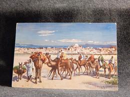 Tunisia Tunis Caravane__(10150) - Tunisia