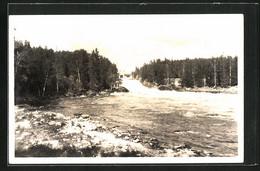 AK Imatra, Fluss Am Waldrand - Finland