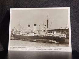 Steamer Motorschiff General Osorio__(12499) - Piroscafi