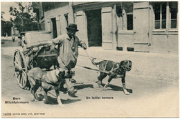 BERNE, BE - Un Laitier Bernois, Attelage De Chiens - BE Berne