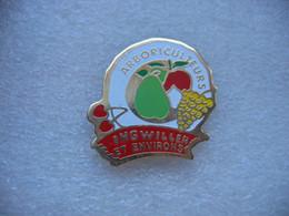 Pin's Des Arboriculteurs De La Commune De INGWILLER Et Environs (Dépt 67). Pommes, Poires, Raisins, Cerises - Alimentazione