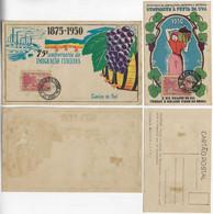 Brazil 1950 Postcard + Souvenir Card Grape Festival And 75th Anniversary Of Italian Immigration In Caxias Do Sul RS - Storia Postale