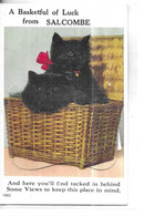 ANGLETERRE                CARTE SYSTEME DEPLIANT ACCORDEON    CHAT DANS PANIER  BASKETFUL OF LUCK   FROM SALCOMBE - Autres