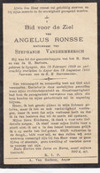 Angelus Ronsse Zingem 1849 Asper 1933 Doodsprentje Mortuaire - Religion & Esotericism