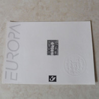 Belgique Belgie Feuillet Noir Et Blanc Europa / Zwart -wit Velletjes  ( ZW/NB ) 2000 - 2922 - Black-and-white Panes
