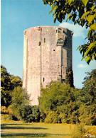 45 - Châtillon Coligny - La Tour Du Château De Coligny - Chatillon Coligny