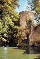 45 - Châtillon Coligny - Les Douves Du Château - Chatillon Coligny