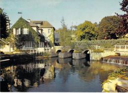 45 - Châtillon Coligny - Le Moulin De La Fosse - Chatillon Coligny