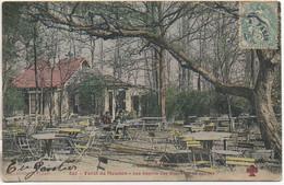92 Forêt De MEUDON  Les Sapins Des Bruyères De Sèvres - Meudon