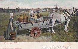 365240Walgeren, Walchersche Melkkar (poststempel 1907) - Andere