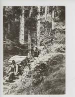 """Les Vosges : Les Vieux Métiers, Le Chemin De Schlittage """"lé Hléve"""" - Coucheron N°36 - Other"""
