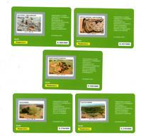 ITALIA :  Tessere Filateliche Dal BF. Parco Nazionale Dell'ALTA  MURGIA - 5 Val.-  Del  24.05.2021 - Philatelic Cards