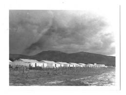 Guerre D'Algérie, Photo 120x90mm. Bekkaria. Les Nouvelles Habitations Musulmanes Remplacent Mechtas Et Gourbis. Mai 1959 - Oorlog, Militair