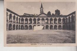 CAPRINO BERGAMASCO  CELANA  BERGAMO CORTILE  DIFETTO  VG  1950 - Bergamo