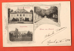 ZOT-30 Gruss Aus Sissach Multiviews Schloss Ebenrain Entenweiher Park Gelaufen Sissach 1904 Pionier - BL Basle-Country