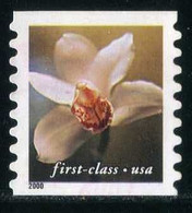 USA - Tan Flower - Cymbidium Orchid   Flowers   Orchids   Plants (Flora) - Orchideen