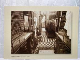 Cage House 1990s, Hong Kong Postcard - Cina (Hong Kong)