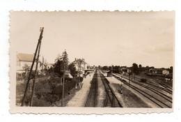 Neuville En Poitou. La Gare . Photo Originale 1936. - Neuville En Poitou