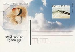 Poland Postcard Cp. 1250: Holiday Greetings Seashell - Postwaardestukken