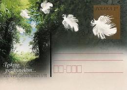 Poland Postcard Cp. 1253: I Miss You, Best Regards - Postwaardestukken