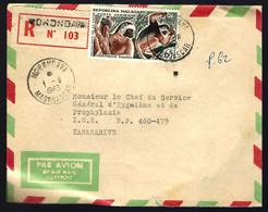 THÈME SINGES - 1963 - RECOMMANDÉ DE MADAGASCAR - Madagascar (1960-...)