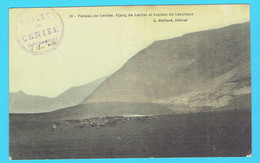 CPA Plateau De Cenise - Etang De Lachat Et Laplats De Leschaux - Cachet Chalet De Cenize - 74 Haute Savoie  Cp Colorisée - Altri Comuni