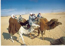 CPM, Tunisie , Caravane Au Sud Tunisien ,Ed. Mirage,1999, Avec Timbre - Tunisia
