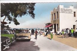 85 NOIRMOUTIER   Avenue De La Plage Des Dames ,Hôtel Beau Rivage , Voiture Année 1950 Simca Chambord - Noirmoutier