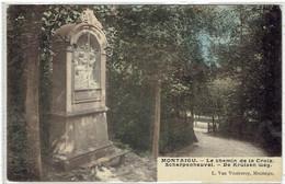 Scherpenheuvel-Zichem - Montaigu - Le Chemin De La Croix - De Kruisen Weg - Gekleurd - Scherpenheuvel-Zichem