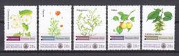 Micronesia 2012 - MNH Set - PLANTS - FLOWERS - FLORIADE NETHERLANDS Set 2 - Sonstige