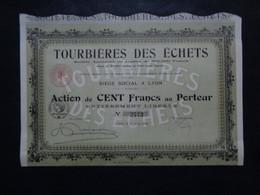 FRANCE - 69 - LYON 1918 - TOURBIERES DES ECHETS - ACTION DE 100 FRS - Ohne Zuordnung