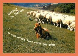 A668 / 527 En Morvan Chevre Mouton - Non Classificati