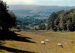 Animaux - Vaches - Paysage En Morvan - CPM - Voir Scans Recto-Verso - Cows