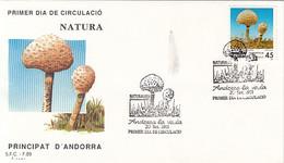 PLANTS, MUSHROOMS, COVER FDC, 1991, ANDORRA - Pilze