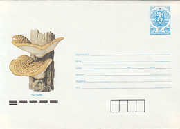 PLANTS, MUSHROOMS, COVER STATIONERY, ENTIER POSTAL, 1990, BULGARIA - Pilze