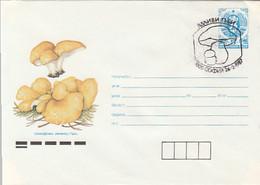 PLANTS, MUSHROOMS, COVER STATIONERY, ENTIER POSTAL, 1987, BULGARIA - Pilze